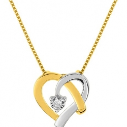 Collier Diamant 0,015 BICOLOR OR750